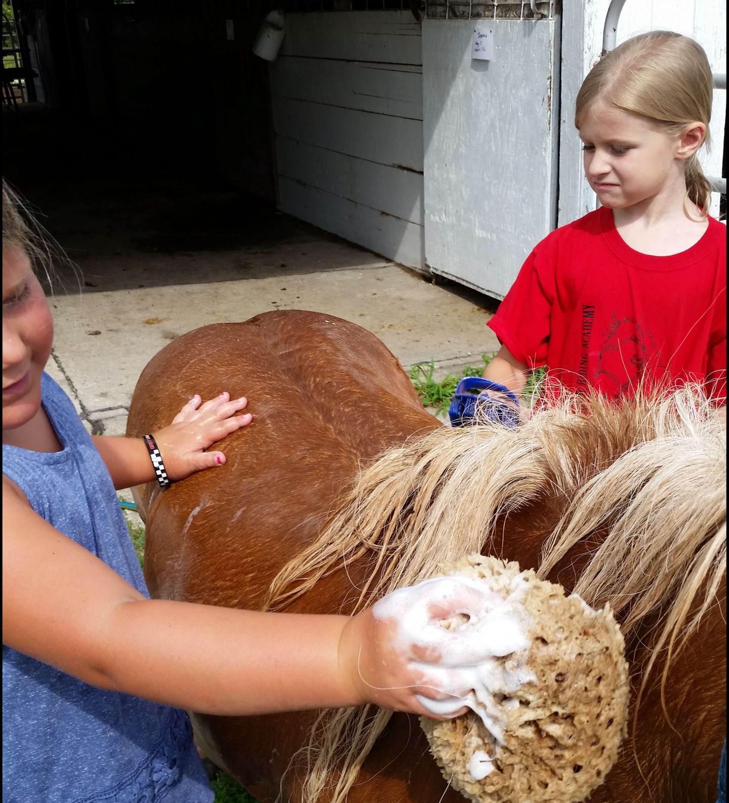 Pee Wee Pony Camp